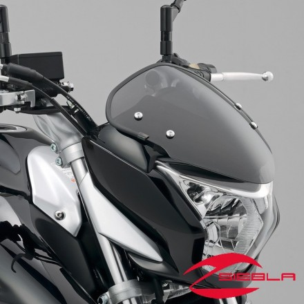 Sport Screen by Suzuki GW250